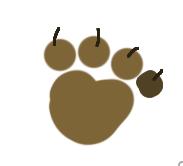 dogtraxpic